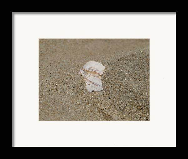 Sand Framed Print featuring the photograph Broken Shell by Kim