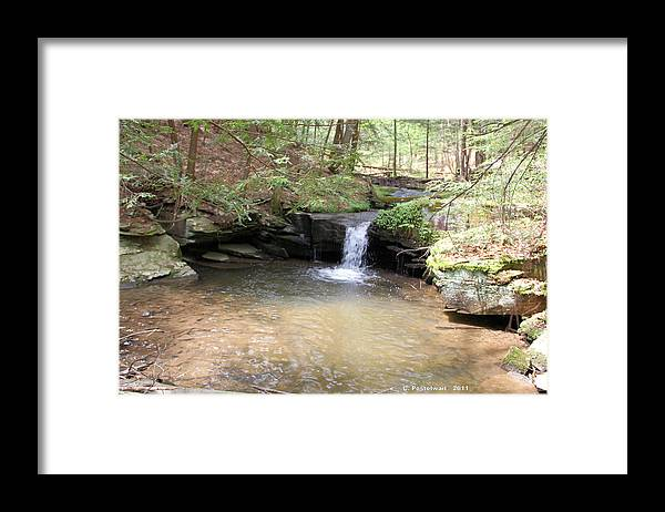 Streams Framed Print featuring the photograph Brook Trout Falls by Carolyn Postelwait
