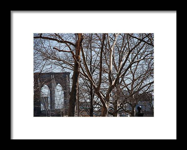 Architecture Framed Print featuring the photograph Brooklyn Bridge Thru The Trees by Rob Hans