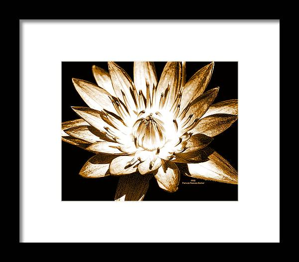 Flower Framed Print featuring the mixed media Brown Beauty by Pamula Reeves-Barker