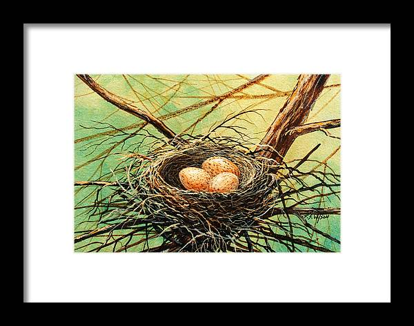 Wildlife Framed Print featuring the painting Brown Speckled Eggs by Frank Wilson