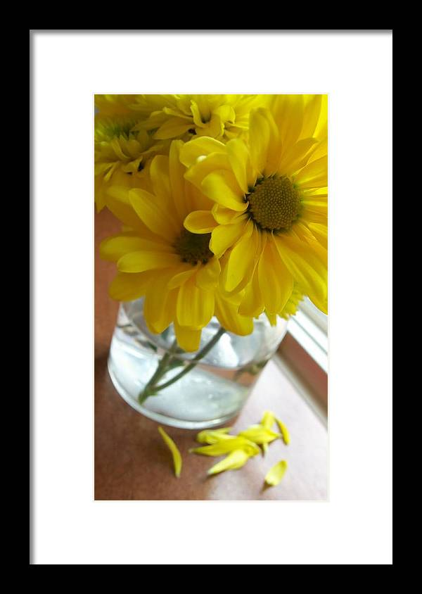 Flowers Framed Print featuring the photograph Brunch by Laurel Ransom