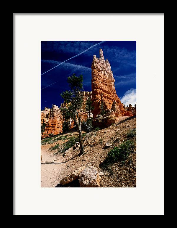 Bryce Canyon Framed Print featuring the photograph Bryce Canyon 10 by Art Ferrier