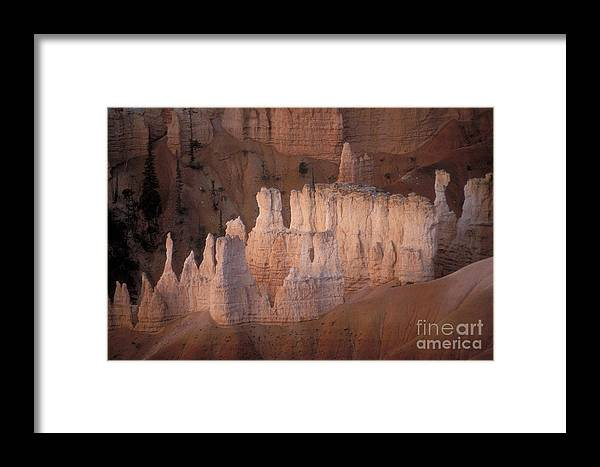 Bryce Canyon Framed Print featuring the photograph Bryce Canyon Hoodoos by Sandra Bronstein