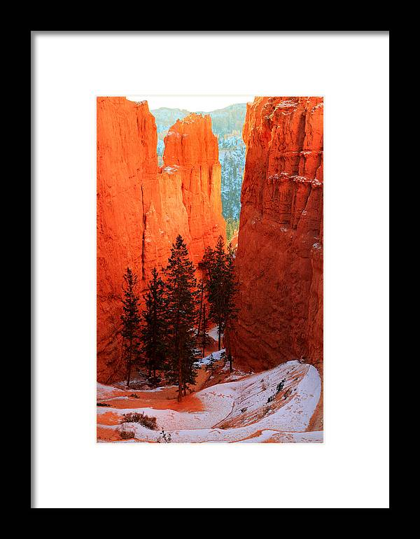Bryce Framed Print featuring the photograph Bryce Canyon Sunrise Glow by Pierre Leclerc Photography