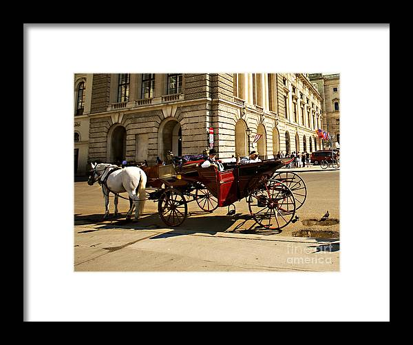 Budapest Framed Print featuring the photograph Vienna Buggy Man by Madeline Ellis