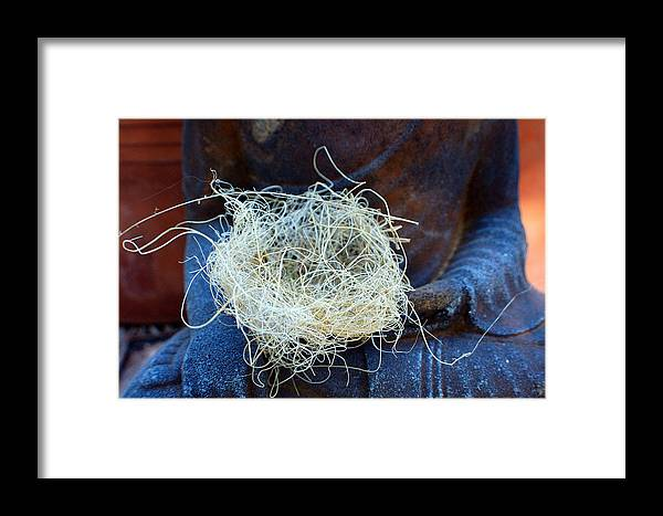Spiritual Framed Print featuring the photograph Buddah's Nest by Heather S Huston