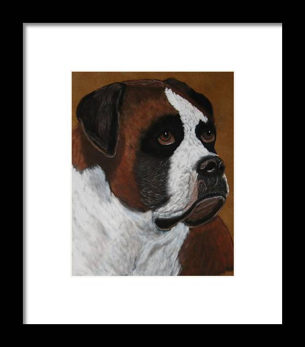 Boxer Paintings Framed Print featuring the painting Buddy by Lori DeBruijn