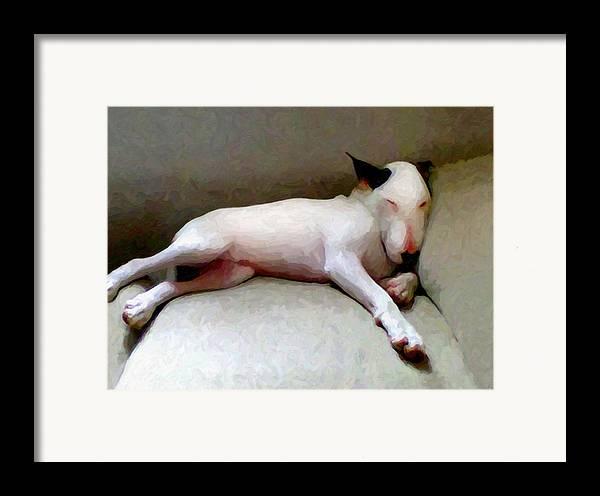 English Bull Terrier Framed Print featuring the digital art Bull Terrier Sleeping by Michael Tompsett