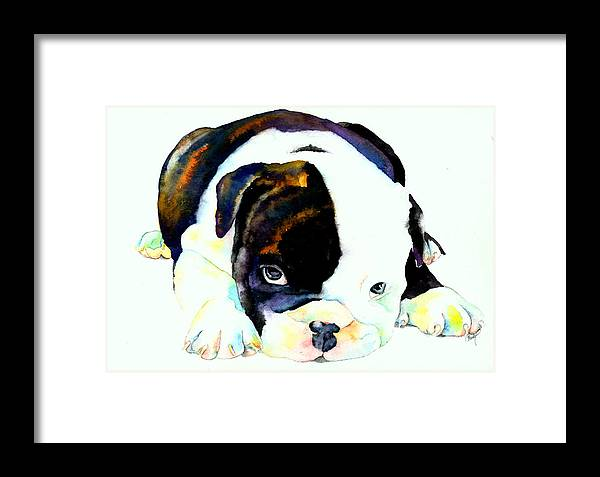 Puppy Framed Print featuring the painting Bulldog Puppy by Christy Freeman