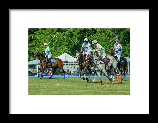 Banbury Cross Framed Print featuring the photograph Bulldogs After The Ball by Sarah M Taylor