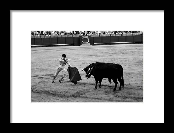 Bullfighting Framed Print featuring the photograph Bullfighting 22b by Andrew Fare