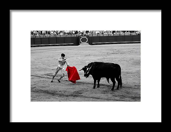 Bullfighting Framed Print featuring the photograph Bullfighting 22c by Andrew Fare