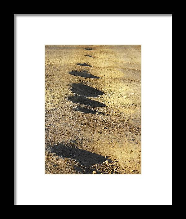 Fun Framed Print featuring the photograph Bumps In The Road by David Kehrli