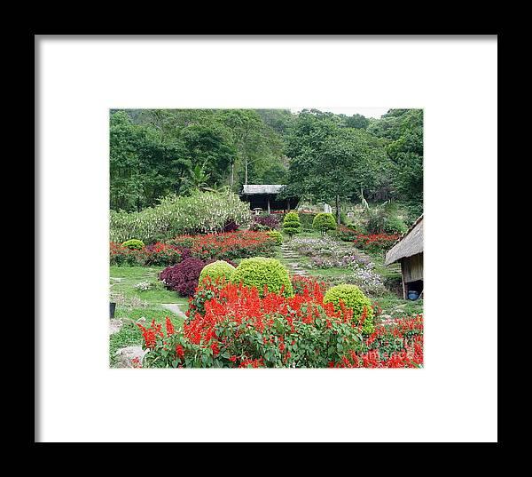 Garden Framed Print featuring the photograph Burma Village Garden by John Johnson