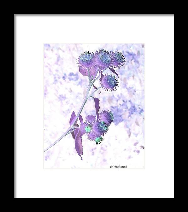 Plant Framed Print featuring the digital art Bush Of Burdock by Dr Loifer Vladimir