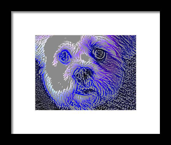 Dog Framed Print featuring the photograph Buster Photo by Wayne Potrafka