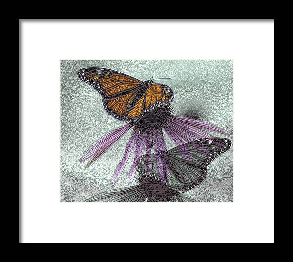 Butterflies Framed Print featuring the digital art Butterflies Under Glass by Evelyn Patrick