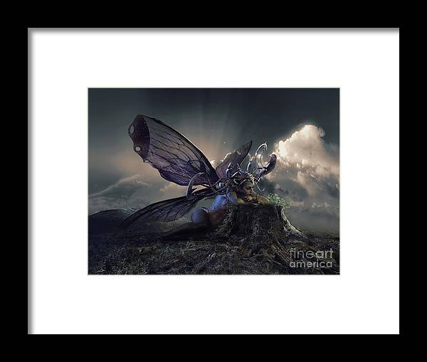 Butterfly Framed Print featuring the digital art Butterfly And Caterpillar by Shanina Conway