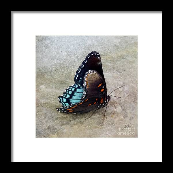 Butterfly Blue On Groovy 2 Framed Print featuring the photograph Butterfly Blue On Groovy 2 by Anita Faye