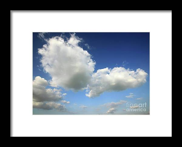 Sky Framed Print featuring the photograph Butterfly by Deborah Brodie