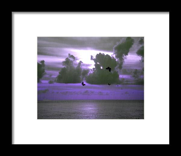 Sky Framed Print featuring the photograph Butterfly Dreams And A Purple Sky by Rosalie Scanlon