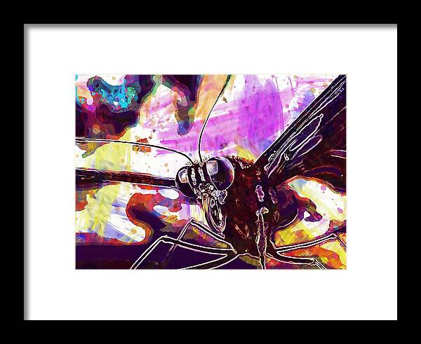Butterfly Framed Print featuring the digital art Butterfly Insect Eyes Probe by PixBreak Art