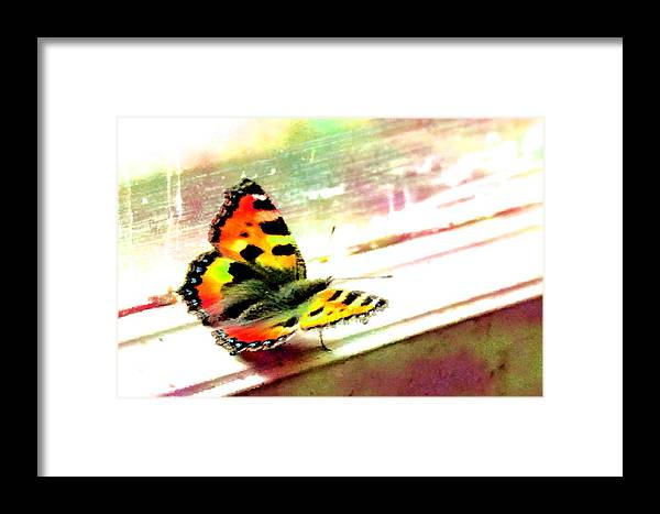 Butterfly Frame Illustration Watercolor Window Background Aquarelle Visiting Business Blurred Bright Imprecise Light Paintings Notebook Pattern Wallpaper Color Water Tortoiseshell Happy Vivid Element Optimistic Urticae Cover Digitally Artistic Fuzzy Architecture Poster Semblance Pane Paper Card Skyey Print Aglais Nymphalis Art Airy Page Rendered Small Writing Spring Papilio Sheet Pastel Paint Framed Print featuring the digital art Butterfly On The Window Frame Watercolor by Lenka Rottova