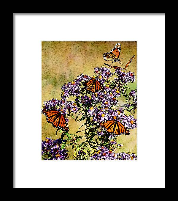 Diane Berry Framed Print featuring the drawing Butterfly Party by Diane E Berry