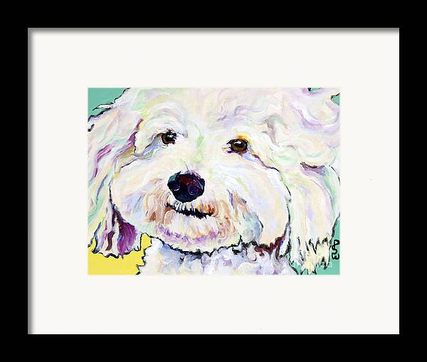 Bischon Framed Print featuring the painting Buttons  by Pat Saunders-White