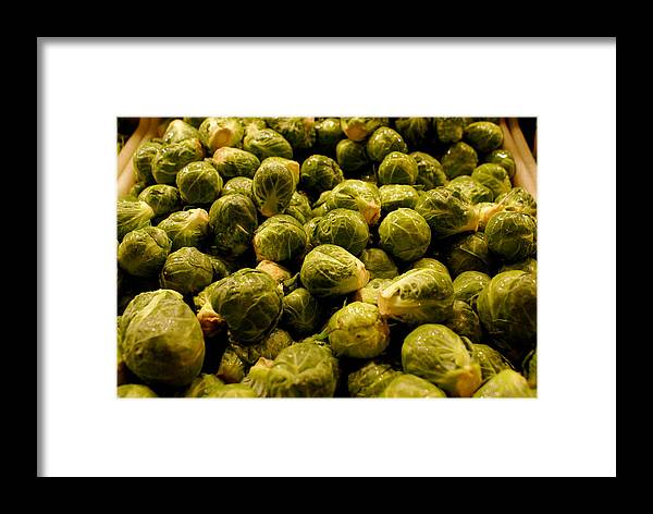 Brussel Sprouts Framed Print featuring the photograph Cabbage Family by Sonja Anderson