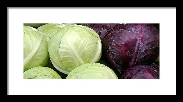 Vegetable Framed Print featuring the photograph Cabbage Heads by Sonja Anderson