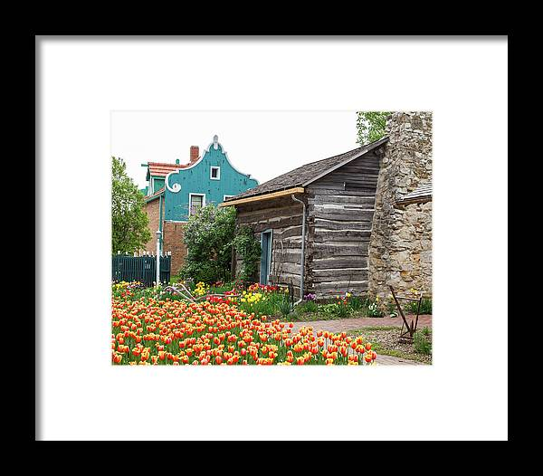Tulips Framed Print featuring the photograph Cabin By The Tulips by Terri Morris