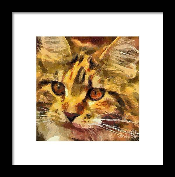 Animal Framed Print featuring the painting Calico Cat by Dragica Micki Fortuna