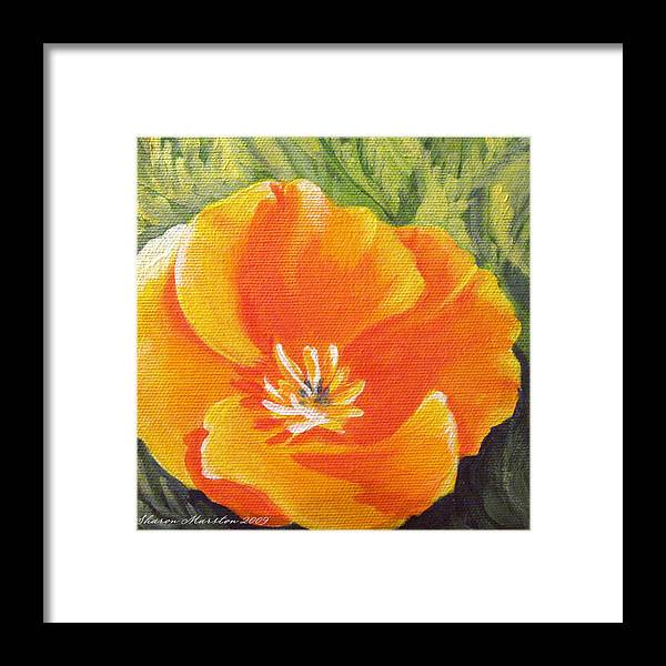 Poppy Framed Print featuring the painting California Poppy by Sharon Marcella Marston