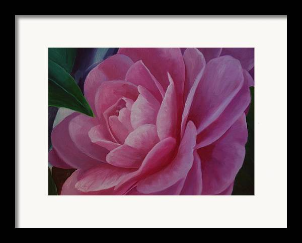 Flower Framed Print featuring the painting California Rose by Marilyn Tower