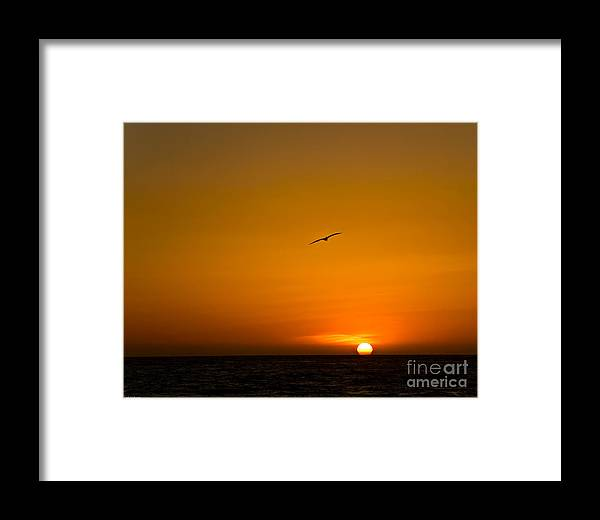 Beach Framed Print featuring the photograph California Sunset by Carl Jackson