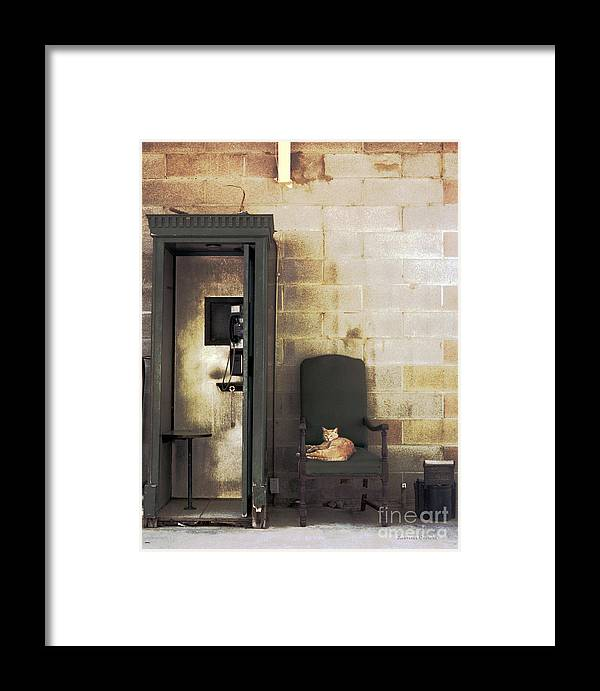 Cat Framed Print featuring the photograph Call Waiting by Lawrence Costales