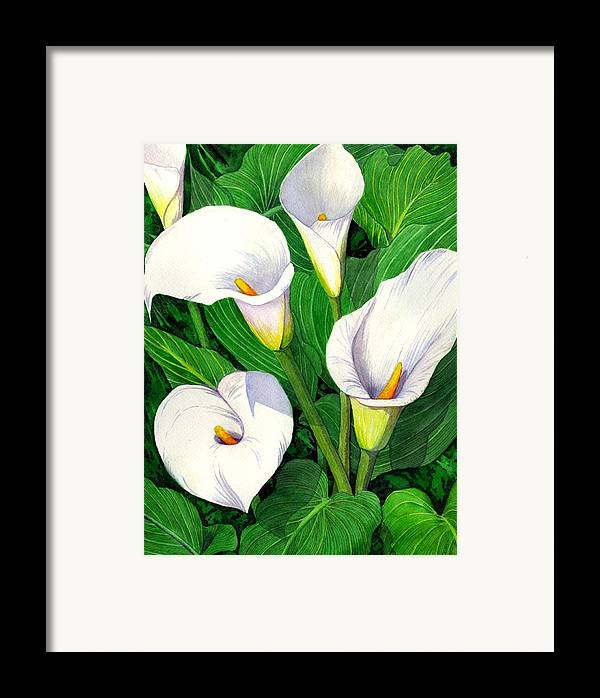 Lily Framed Print featuring the painting Calla Lilies by Catherine G McElroy