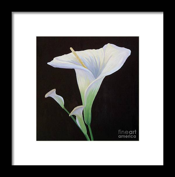Flower Portrait Framed Print featuring the painting Calla Lily X by Mary Erbert