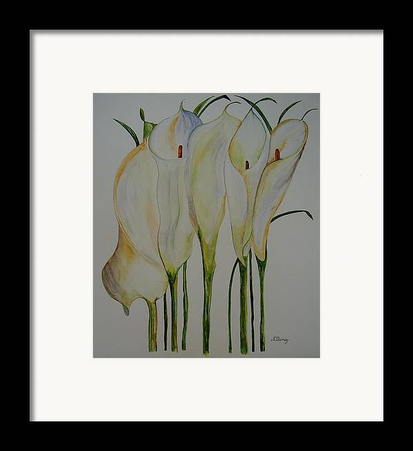 Flowers Framed Print featuring the painting Callas by Murielle Hebert