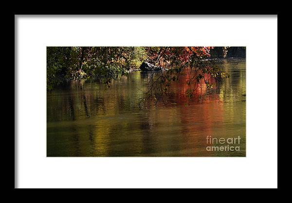 River Framed Print featuring the photograph Calm Reflection by Linda Shafer