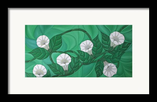Marinella Owens Framed Print featuring the painting Calystgia Sepium by Marinella Owens