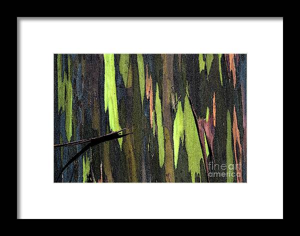 Abstract Framed Print featuring the photograph Camouflage by Carl Ellis