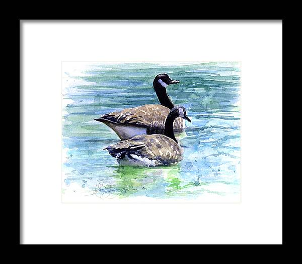 Canada Framed Print featuring the painting Canada Geese by John D Benson