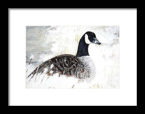Canadian Goose Framed Print featuring the painting Canadian Snow by Debra Sandstrom