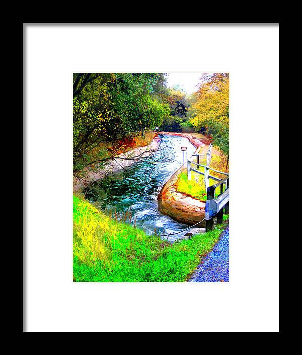 Framed Print featuring the digital art Canal by Danielle Stephenson