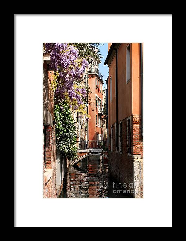 Venice Framed Print featuring the photograph Canal in Venice with Flowers by Michael Henderson