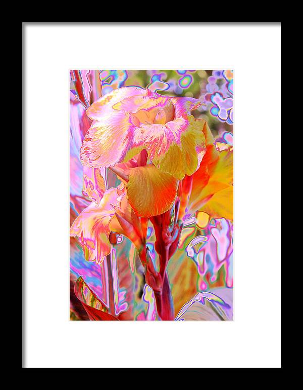 Garden Framed Print featuring the photograph Canna Abstract 3 by M Diane Bonaparte