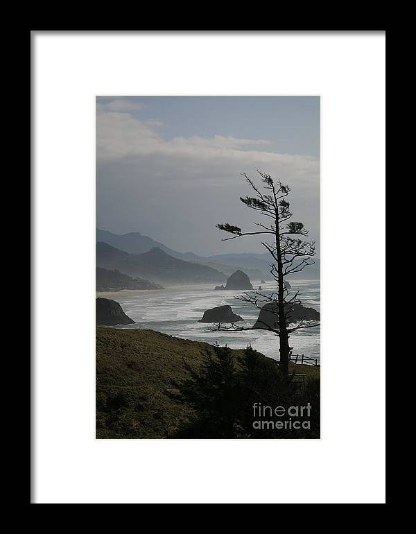 Cannon Beach Framed Print featuring the photograph Cannon Beach by Timothy Johnson